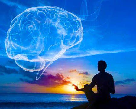 Meditação Cérebro
